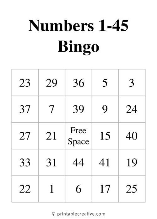 Numbers 1-45 Bingo