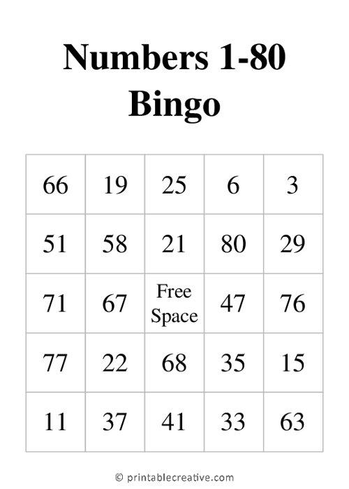 Numbers 1-80 Bingo
