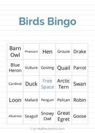 Birds Bingo