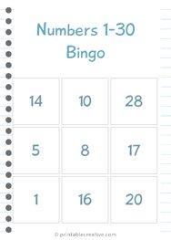 Numbers 1-30 Bingo