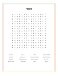 Fossils Word Search Puzzle
