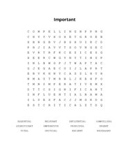 Important Word Search Puzzle
